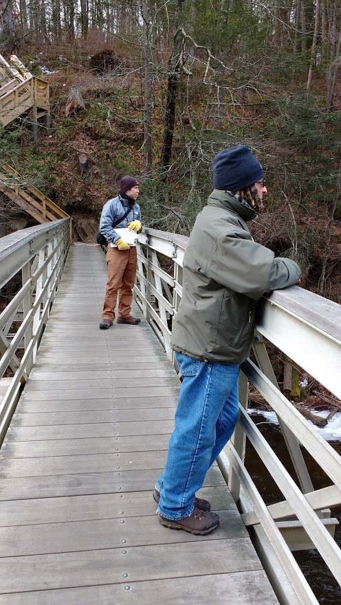 midwinter-bald-eagle-survey