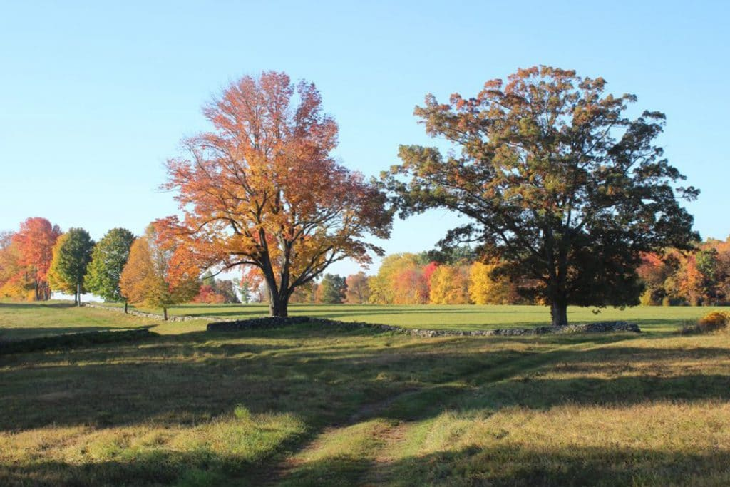 MONITORING CONSERVATION EASEMENTS