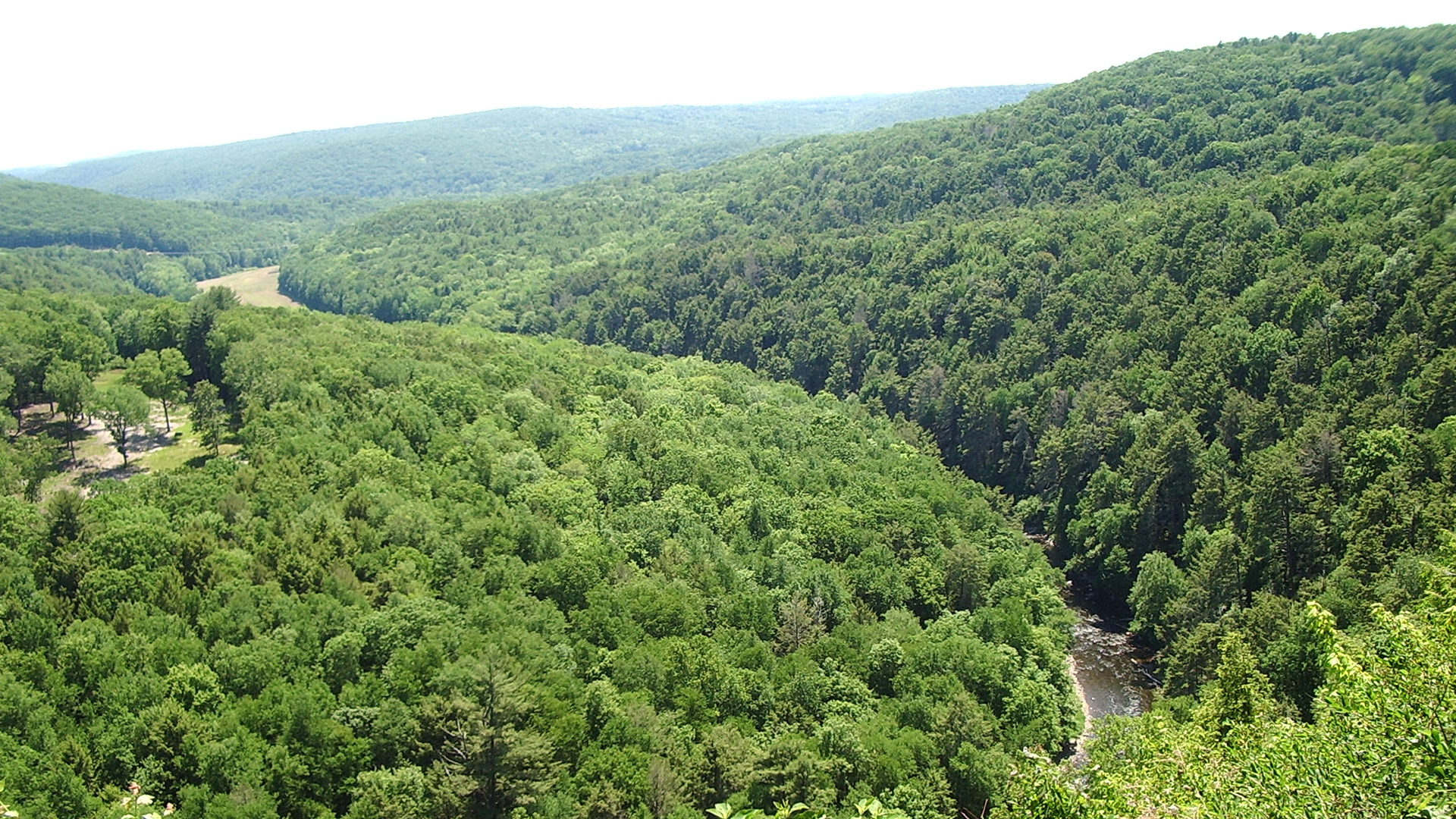 A Land Trust Supported By Your Donations | Steep Rock Association